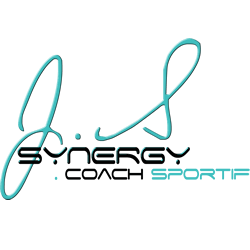 Logo Js Synergy